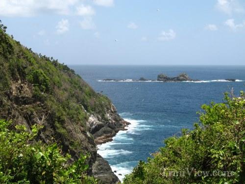 View from Bird Island