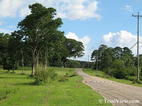 Saaman Park, Chaguaramas